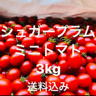 ミニトマト 超濃度‼️‼️ 送料込み★(野菜)