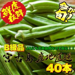 本日限定品 訳あり 宮古島産 オクラ 40本(野菜)