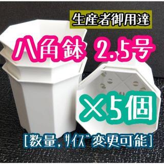 ◎5個◎八角鉢 2.5号 ブラック 2.5寸 シャトル鉢 (プランター)