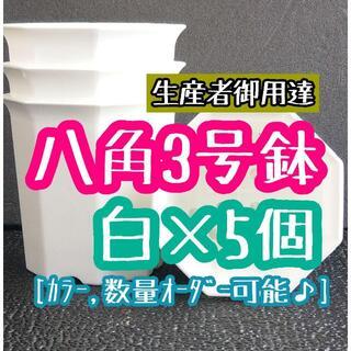 八角鉢 ◎5個◎ ブラック 3号 3寸 プラ鉢 ミニ鉢 シャトル鉢(プランター)