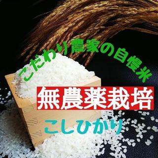 こだわり農家の自慢米 白米5㎏(無農薬栽培)