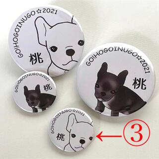 【保護犬GO】③白桃 小 応援缶バッジ(その他)