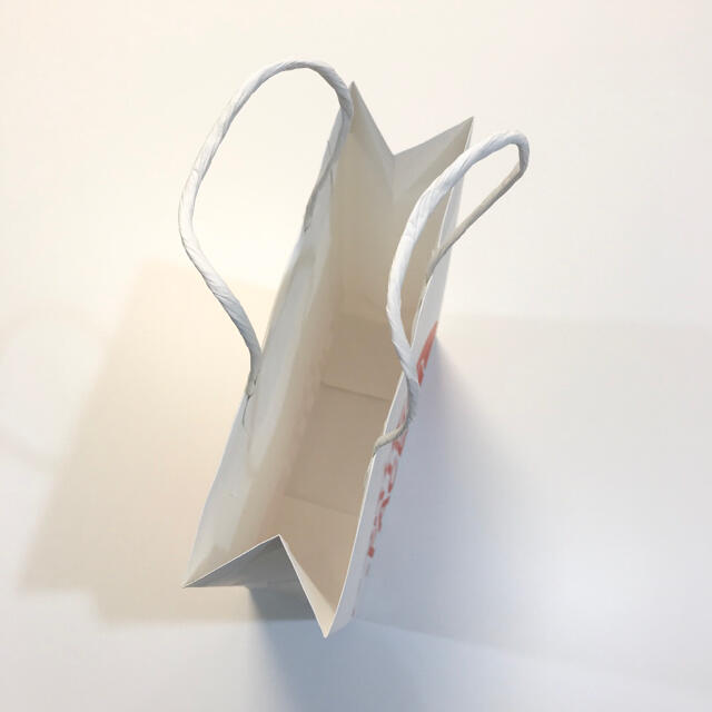 THE NORTH FACE(ザノースフェイス)の韓国限定☆新品/ノースフェイス/紙袋/ショッパー/A4サイズ レディースのバッグ(ショップ袋)の商品写真