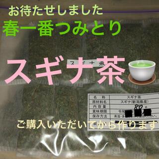 体調管理に★煮出し用スギナ茶★20パック  (健康茶)
