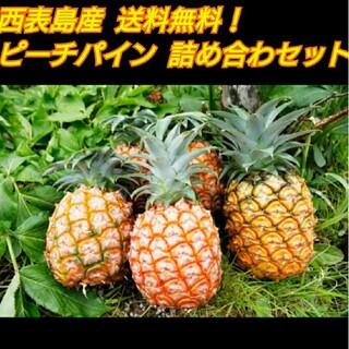 ピーチパイン 【 6玉以上 5kg以上 】 西表島産  パイナップル  送料無料(フルーツ)