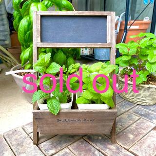 黒板付木製スタンド式プランター  可愛い 多肉植物 ぴったりサイズ(プランター)