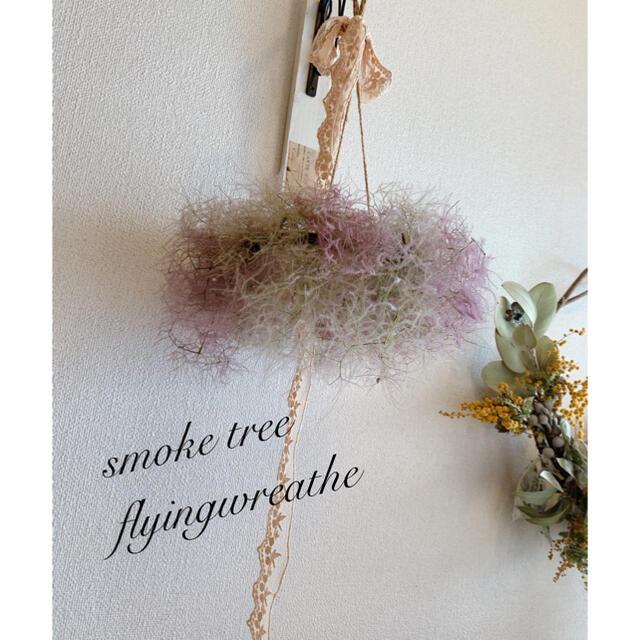 スモークツリー  フライングリース ☘️25cm ハンドメイドのフラワー/ガーデン(ドライフラワー)の商品写真