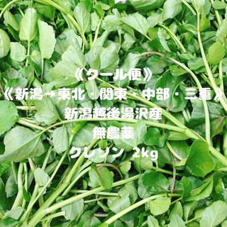 《クール便》《新潟→東北・関東・中部・三重》《無農薬》クレソン2kg(野菜)