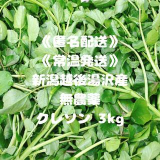 《匿名配送》《常温発送》《全国一律送料》《無農薬》クレソン3kg(野菜)