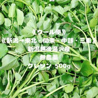 《クール便》《新潟→東北・関東・中部・三重》《無農薬》クレソン500g(野菜)