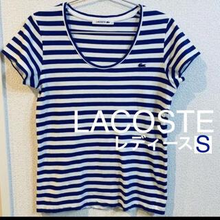 LACOSTE - 【ラコステ】美品 ボーダー Tシャツ レディースS