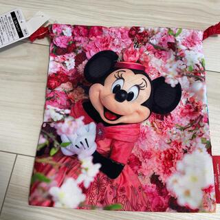 Disney - 新品⭐︎ディズニー イマジニング 巾着