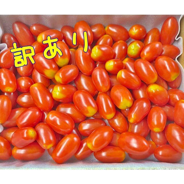訳あり フルーツトマト ミニトマト 1キロ コンパクト便 食品/飲料/酒の食品(野菜)の商品写真
