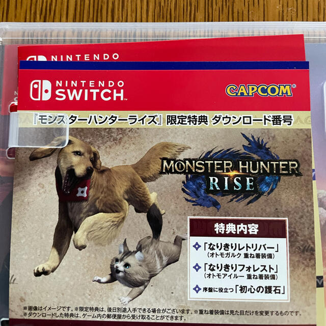 Nintendo Switch(ニンテンドースイッチ)のモンスターハンターライズ スイッチ ソフト 特典付 エンタメ/ホビーのゲームソフト/ゲーム機本体(家庭用ゲームソフト)の商品写真