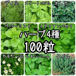 【ハーブの種】選べる4種 100粒 種子