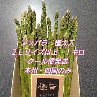 栃木県産グリーンアスパラガス2Lサイズ以上 極太サイズ含む1kg入り(野菜)