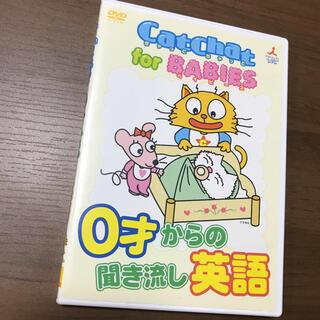 CatChat for BABIESキャットチャットDVD0才からの聞き流し英語