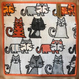 FEILER - 【新品未使用】FEILER フェイラー 大判 タオルハンカチ 猫  キャッツ