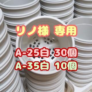 プラ鉢2.5号鉢【A-25】30個 スリット鉢 丸 プレステラ 多肉植物(プランター)
