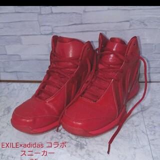 adidas - 【美品】EXILE×adidas コラボ スニーカー 25㎝