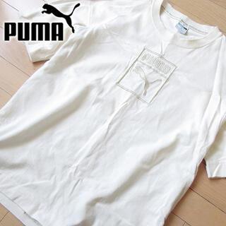 プーマ(PUMA)の超美品 M PUMA プーマ メンズ 半袖カットソー アイボリー(Tシャツ/カットソー(半袖/袖なし))