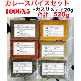 カレースパイス6点セット(100gX5 ) +カスリメティ20g(調味料)