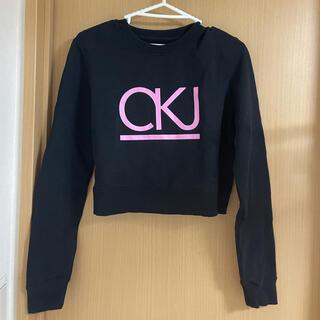 カルバンクライン(Calvin Klein)のカルバンクライン スウェット(トレーナー/スウェット)
