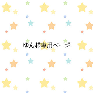 『ゆん様専用』マンスリーカード 月齢カード くすみカラー(アルバム)