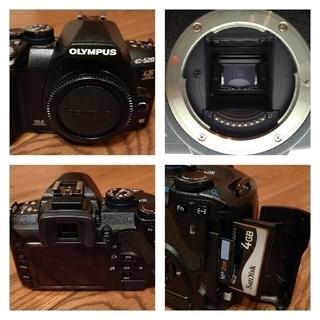 オリンパス(OLYMPUS)のOLYMPUS E-520 超望遠600mmキット  他レンズ等セット(デジタル一眼)