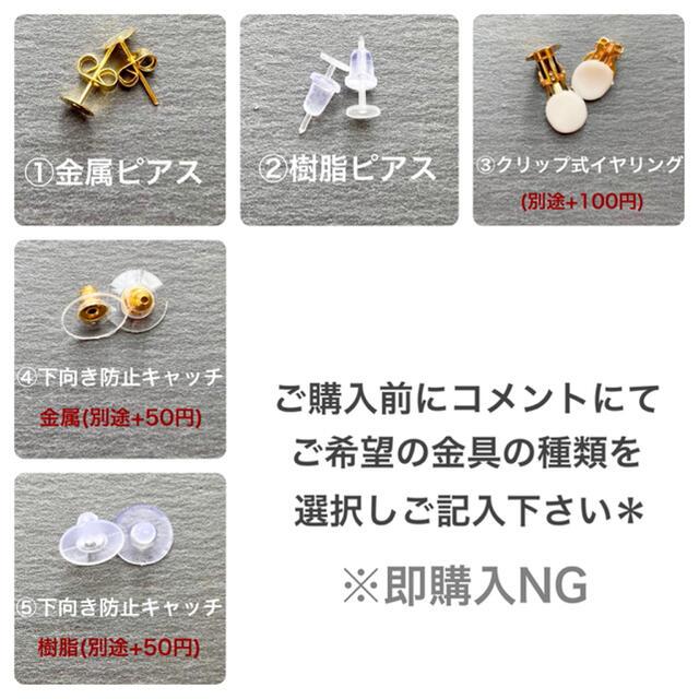 にゃん様専用 樹脂ピアス ハンドメイドのアクセサリー(ピアス)の商品写真