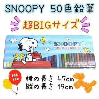 スヌーピー(SNOOPY)のSNOOPY スヌーピー 色鉛筆 50色 新品(色鉛筆)