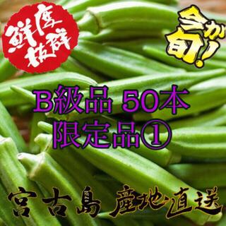 訳あり 宮古島産 オクラ 50本(野菜)