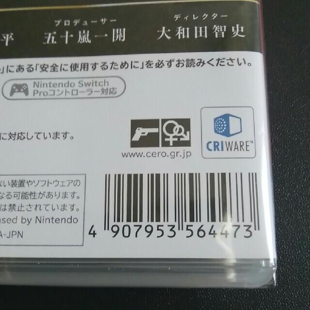 Nintendo Switch(ニンテンドースイッチ)のブリガンダイン ルーナジア戦記 Switch エンタメ/ホビーのゲームソフト/ゲーム機本体(家庭用ゲームソフト)の商品写真