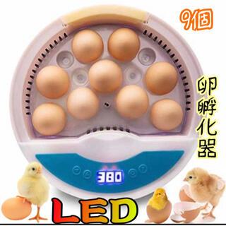 自動孵卵器 インキュベーター 孵化器(鳥)