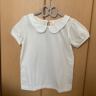 サニーランドスケープ(SunnyLandscape)の襟付きTシャツ★130 Sunny Landscape(Tシャツ/カットソー)