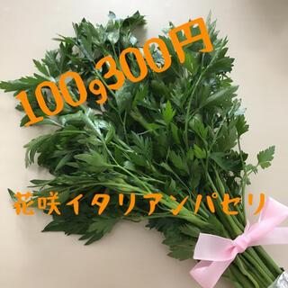 【半額セール】蕾付き花咲無農薬イタリアンパセリ100g300円(野菜)