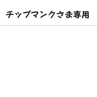 ナイキ(NIKE)の☆チップマンクさま専用☆NIKE サイズ120 中古品(Tシャツ/カットソー)