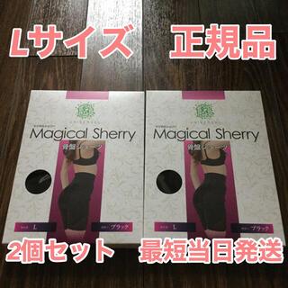 マジカルシェリー 骨盤ショーツ Lサイズ 正規品 2枚セット(その他)