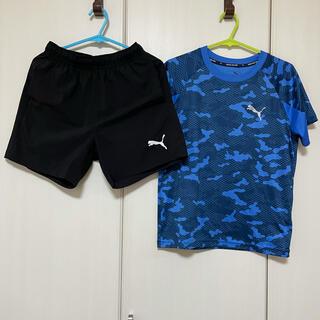 PUMA - PUMA Tシャツ ショートパンツ セット