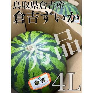 鳥取県倉吉産【鳥取西瓜】秀品 大玉4L 2玉 約20kg! ※残り僅か!(フルーツ)