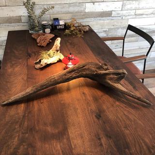 カッコイイ流木…天然物、オブジェ、インテリア(彫刻/オブジェ)