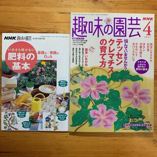 雑誌【 NHK 趣味の園芸・4月号/2005年 】クレマチス特集(専門誌)