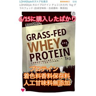 【合成甘味料 合成香料 無添加】プロテイン ココア味 90%残(プロテイン)