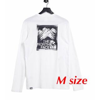 ザノースフェイス(THE NORTH FACE)のTHE NORTH FACE ノースフェイス Tシャツ 長袖 ロンT 海外モデル(Tシャツ/カットソー(七分/長袖))