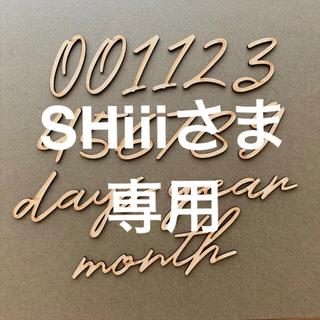 木製レターバナー 月齢フォトセットI / ニューボーン 100日祝 マンスリー
