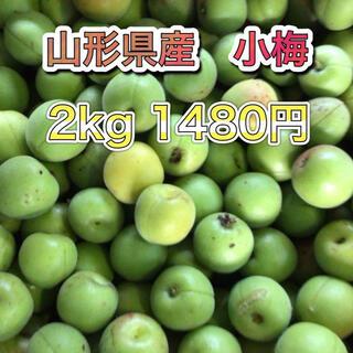 61701 山形県産 小梅 約2kg 訳あり 梅 ウメ 品種おまかせ(フルーツ)