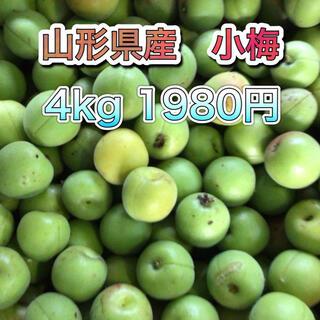 61701 山形県産 小梅 約4kg 訳あり 梅 ウメ 品種おまかせ(フルーツ)