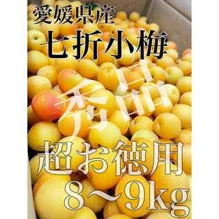 売り切ります!!超お徳用訳あり【七折小梅】梅のみ約8〜9kg!(フルーツ)