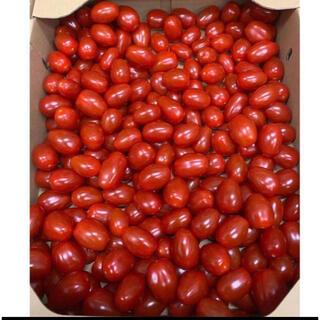 アイコミニトマト 圣女果 6kg(フルーツ)