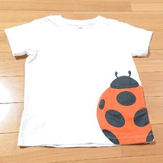MUJI (無印良品) - 無印良品 サイズ100 てんとう虫 Tシャツ いきもの